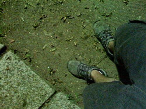 pés-meus